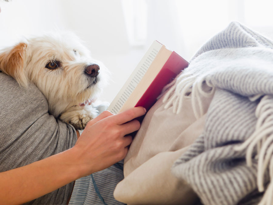 A woman reading with her dog