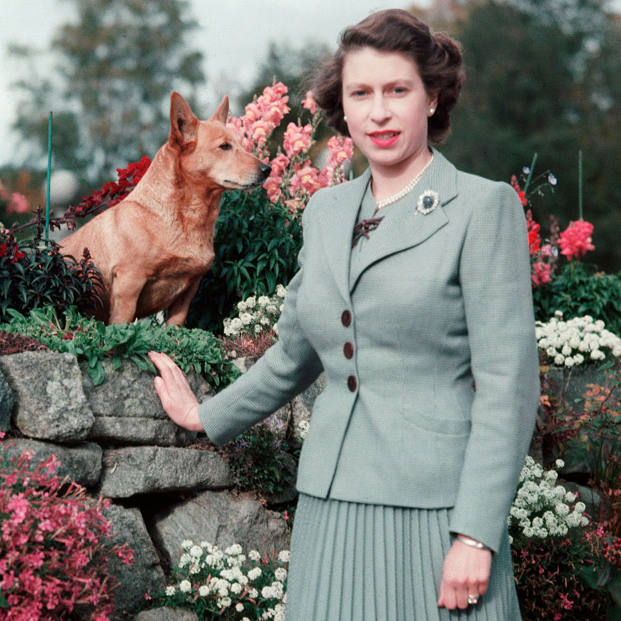 Queen Elizabeth II in the gardens of Balmoral Castle with two of her pet dogs.