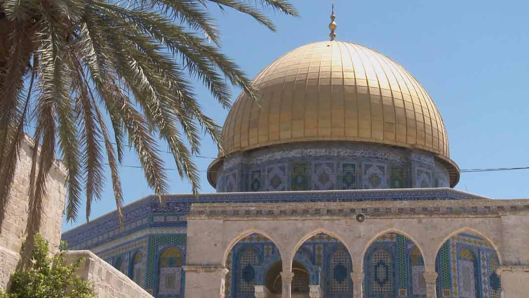 IP: Red Heifer - Dome of the Rock, The Temple Mount, Jerusalem