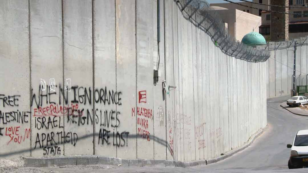 IP: Red Heifer -Grafitti