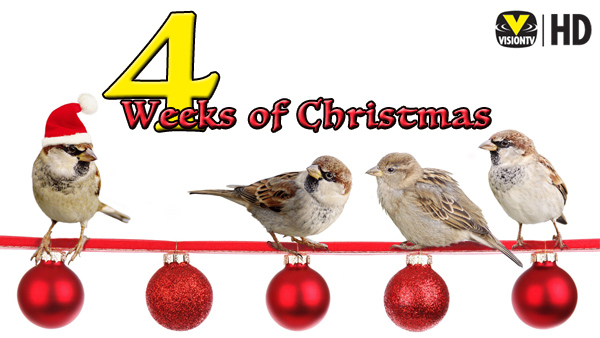 4 Weeks of Christmas - General Banner 2017