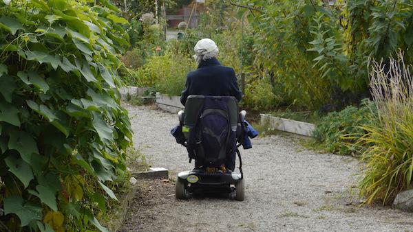 187 Ageless Gardens