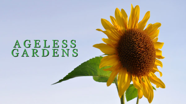 Ageless Gardens S2
