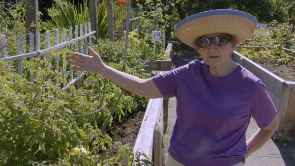 Ageless Gardens - Therapeutic Gardens