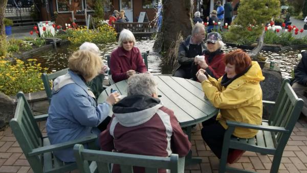 Ageless Gardens - Community Gardening