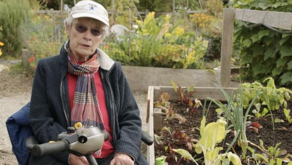 Ageless Gardens - Adaptive Gardening