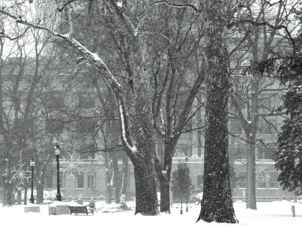 """Winter Scene"" on Flickr (http://www.flickr.com/photos/24172622@N04/2333353958/)"