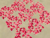 rose_petals_daniel_will_love_them_3_by_aqua1199-d58r362