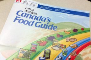 cdn-food-guide