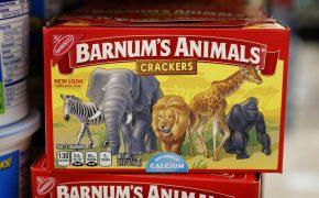 Animals Crackers Roaming Free Zoomer Radio Am740