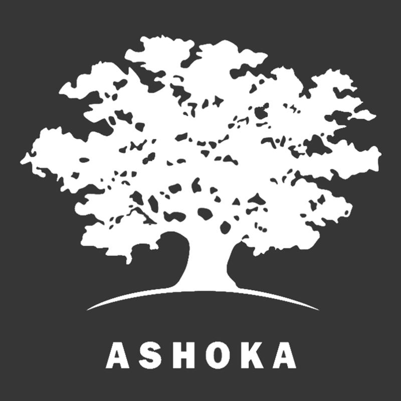 Ashoka mx