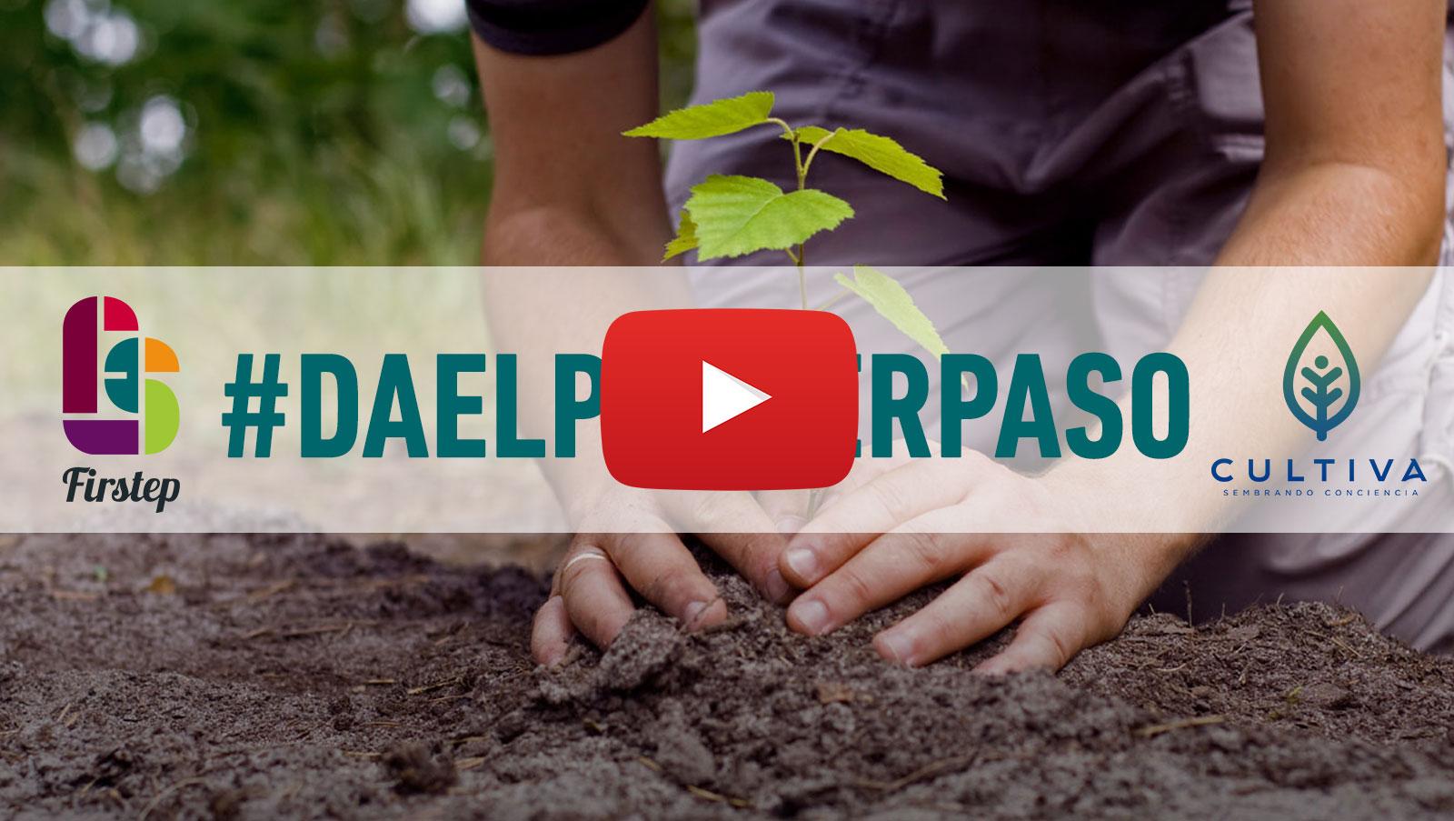 Corporación Cultiva - Reforestemos Chile Nativo