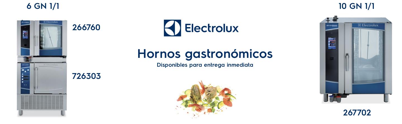 Hornos gastronómicos