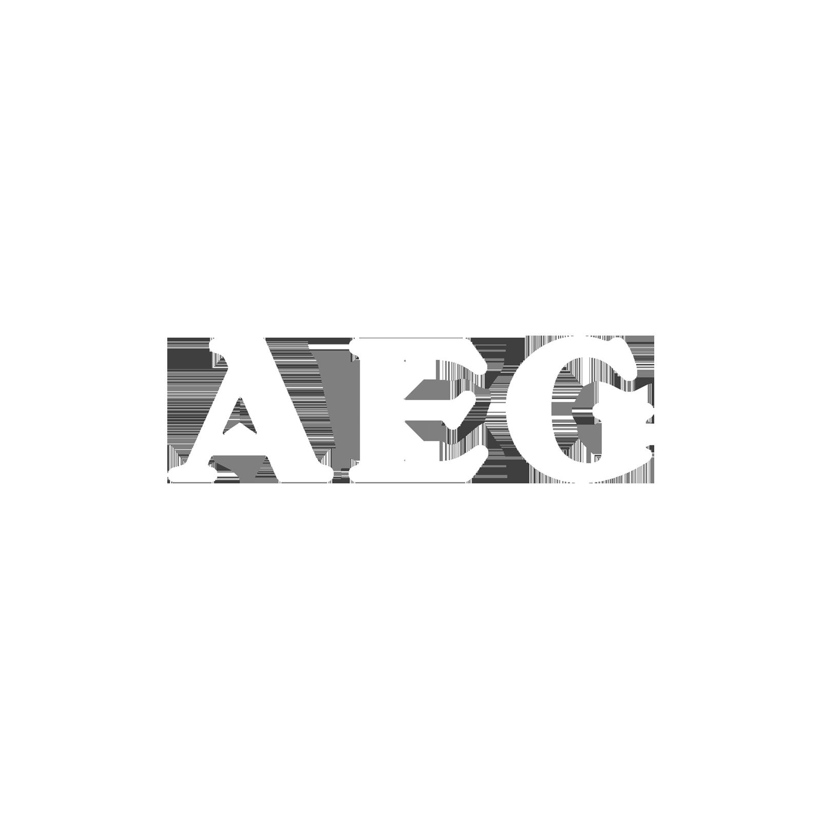 aeg-project-logo