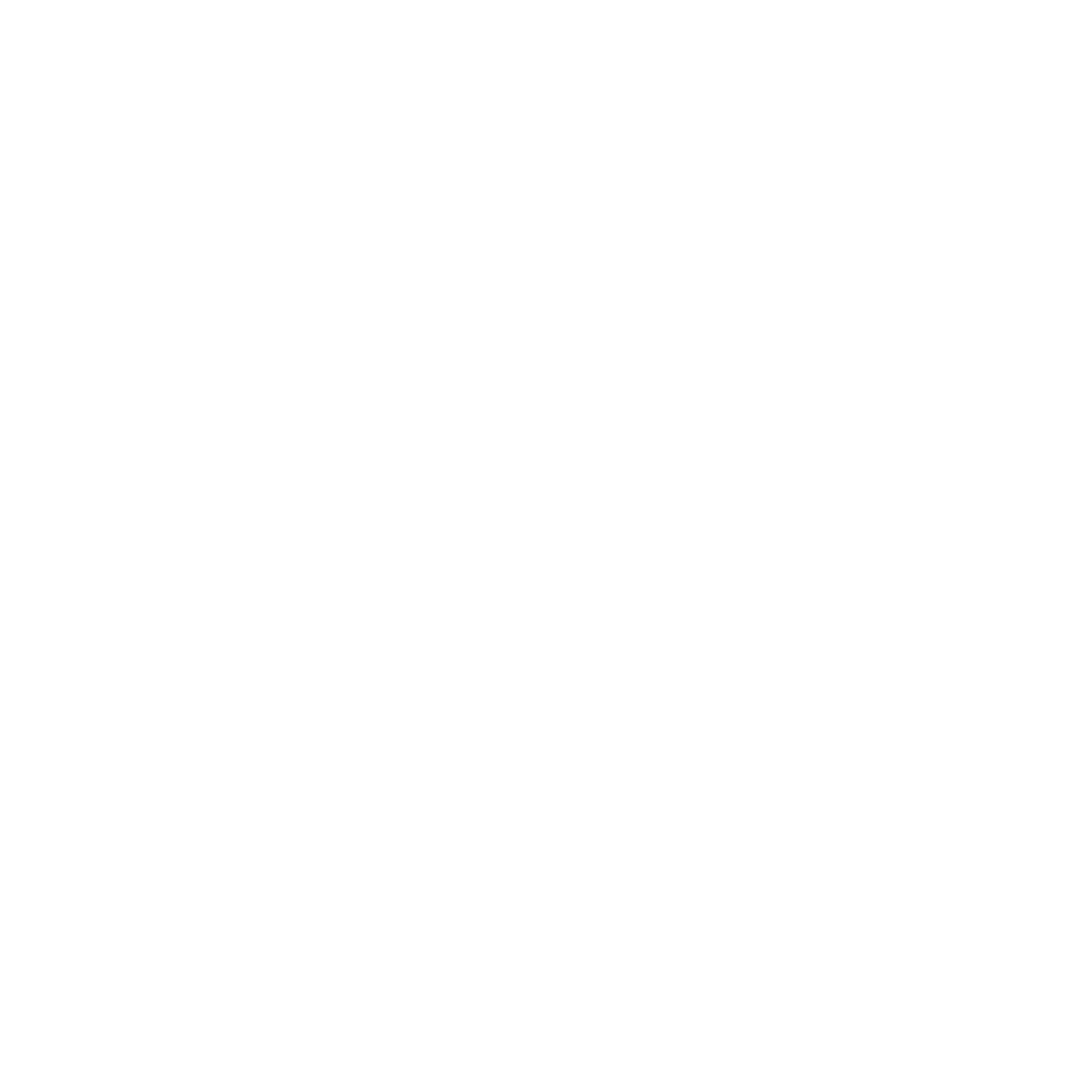nordic-capital-project-logo