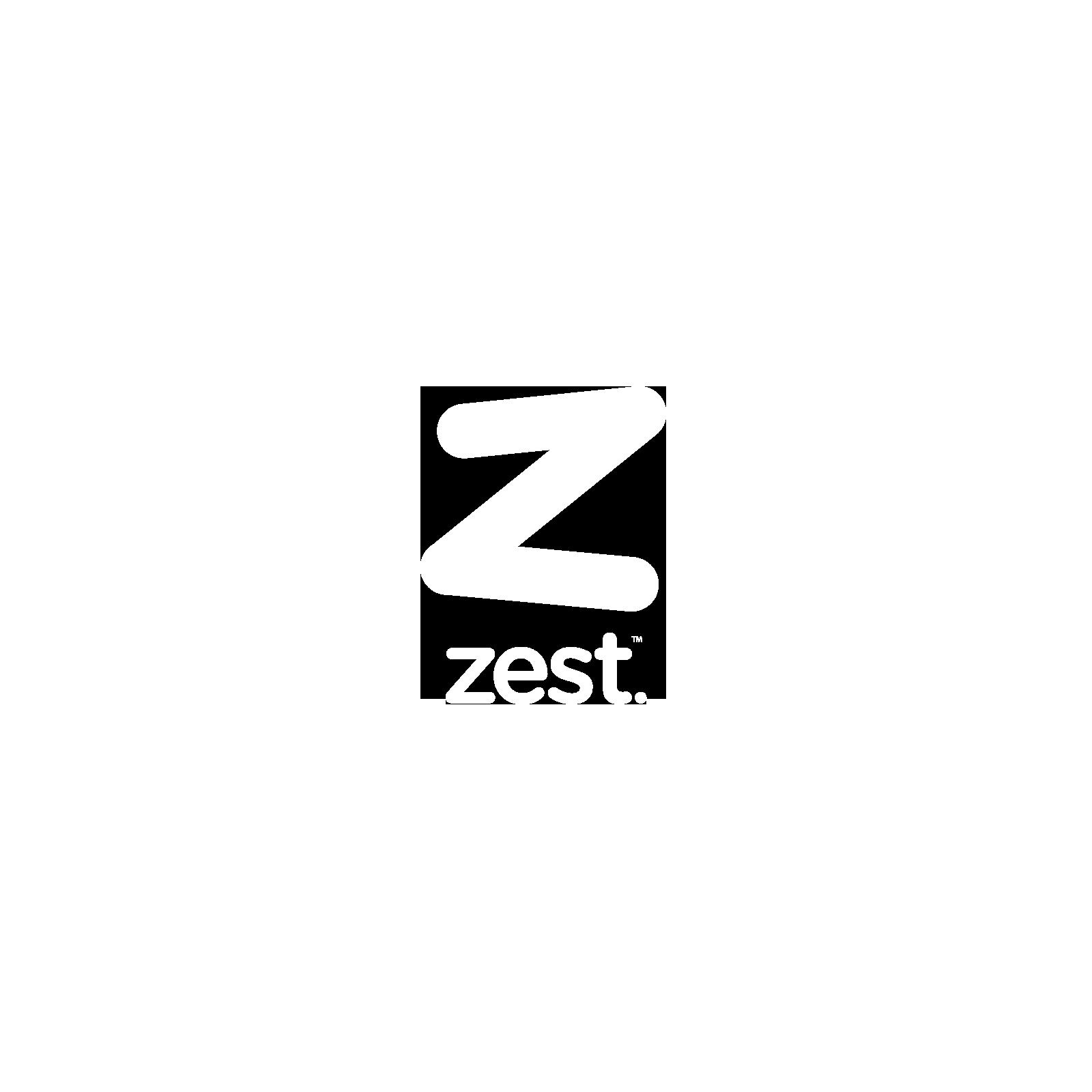 zest-project-logo