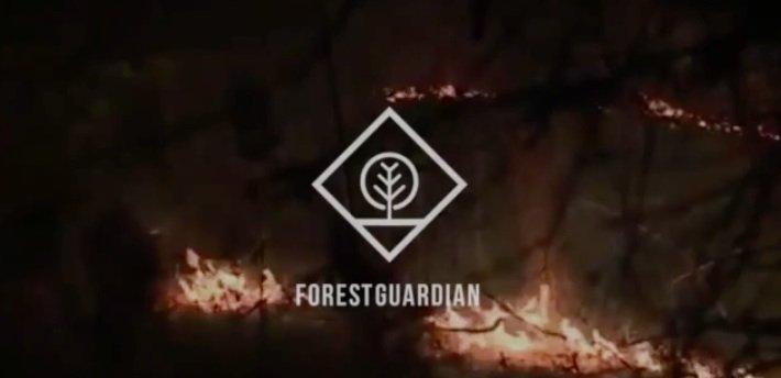 Forest Guardian - Cartago, Costa Rica