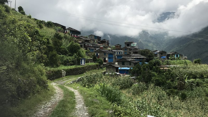 A view of a green and steep village in Nepal. Many houses are on a hillside, and many of them are blue.