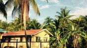 Alyse Blackburn Guyana