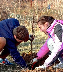 Students plant a tree during a retreat at Eco-Village in Criuleni district