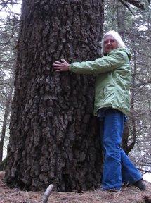 Mary hugs a rare fir tree in Mexico.