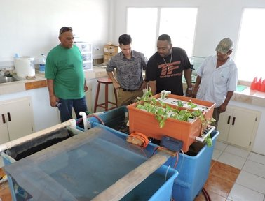 Andy and his CPs looking at Tilapia farming