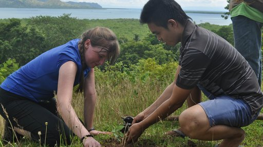 Tree planting with youth in the Philippines
