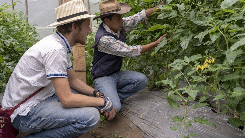 DevonColegrove_FTF_Guatemala