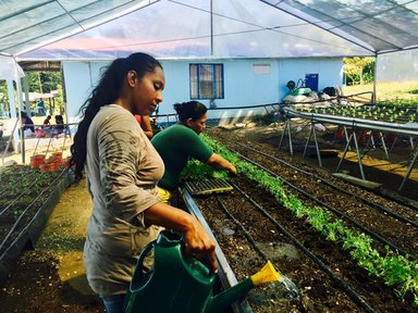 With the help of the Canadian Embassy and Agenda Verde, we helped our local women's organization, ADATA, build a hydroponic garden as a sustainable food source.