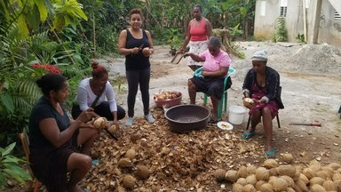 Community members working with coconuts