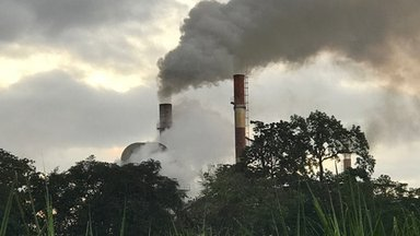 The chimneys_Nick Choa