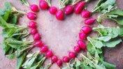 radishes madagascar