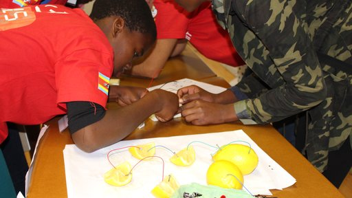 Building simple circuits with lemons and breadboards
