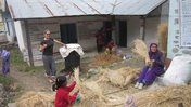 Mushroom Project in Nepal
