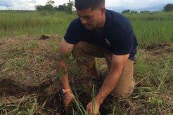 Tree planting at PST