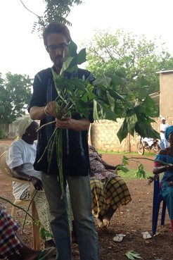 A male Peace Corps Volunteer holds up a leafy green plant to show his Senegalese friends.