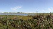 Wetland, 7 Mbokaja