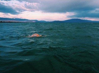 Sarah D'Antoni swim