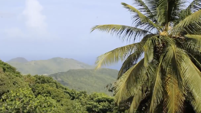 WATCH: Highlighting home in St. Lucia