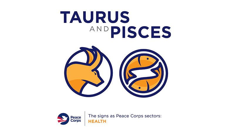 Taurus and Pieces