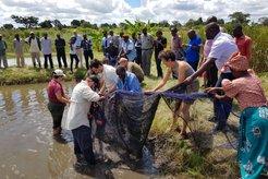 demonstration of fish farming
