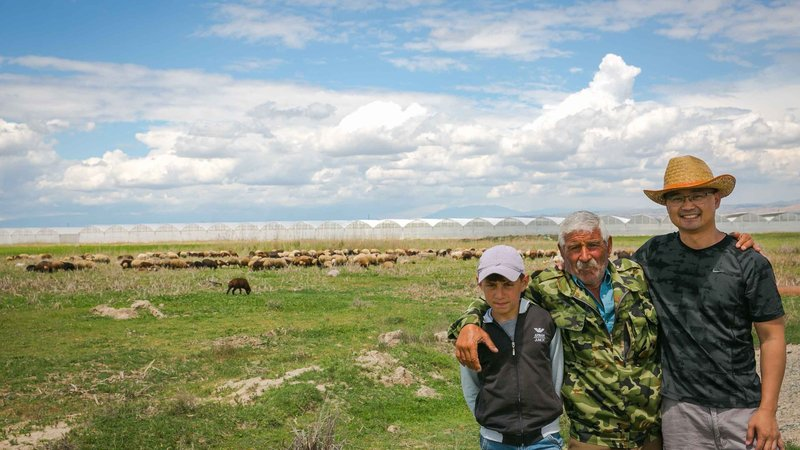 Shepherding in Armenia