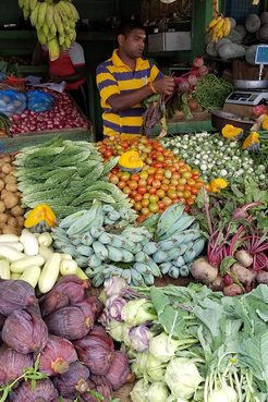 Vegetable stall with variety of vegetables for sale