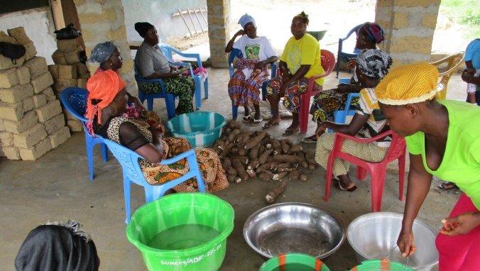 Women Cassava.jpg