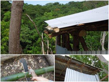 Bamboo gutter