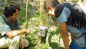 Demonstrating how a camera trap works