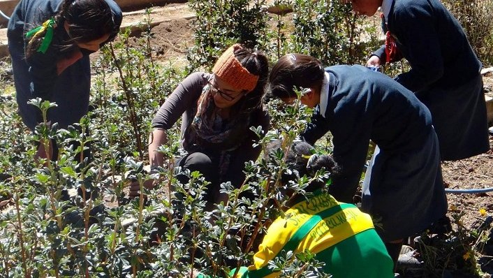 How three Volunteers are tackling Peru's environmental challenges