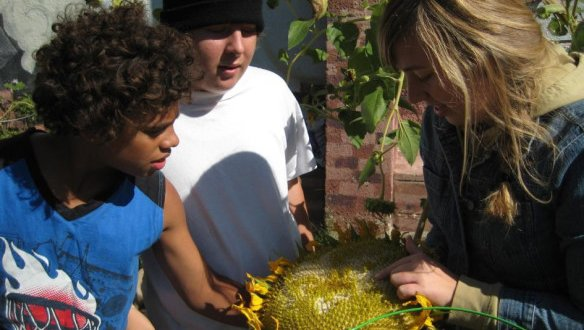 Channeling Peace Corps service, RPCV tackles Baltimore's food deserts