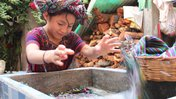 On preserving and sharing world cultures