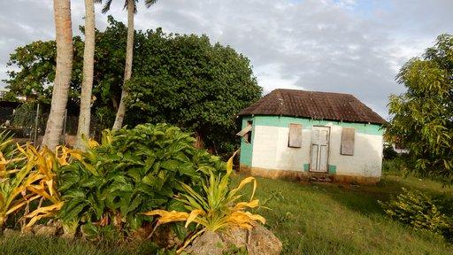 An old Tongan house